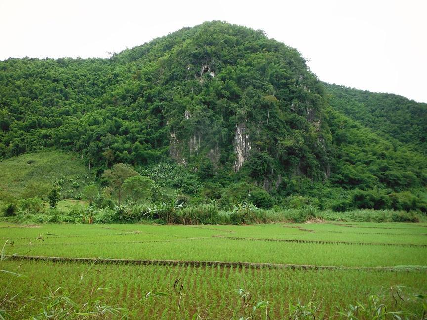 Chiang Rai Wawi Dirt Ride (19).JPG
