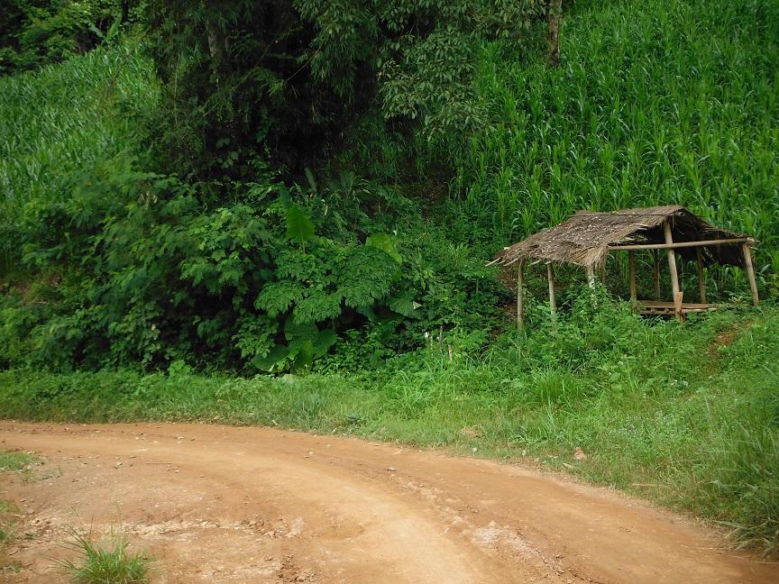 Chiang Rai Wawi Dirt Ride (20).JPG