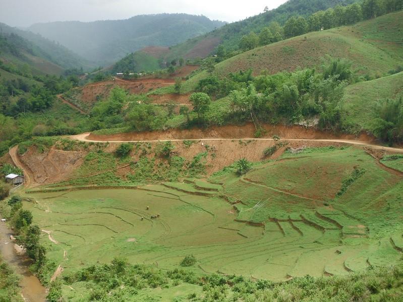 ChiangRai-DoiMaeSalong10.