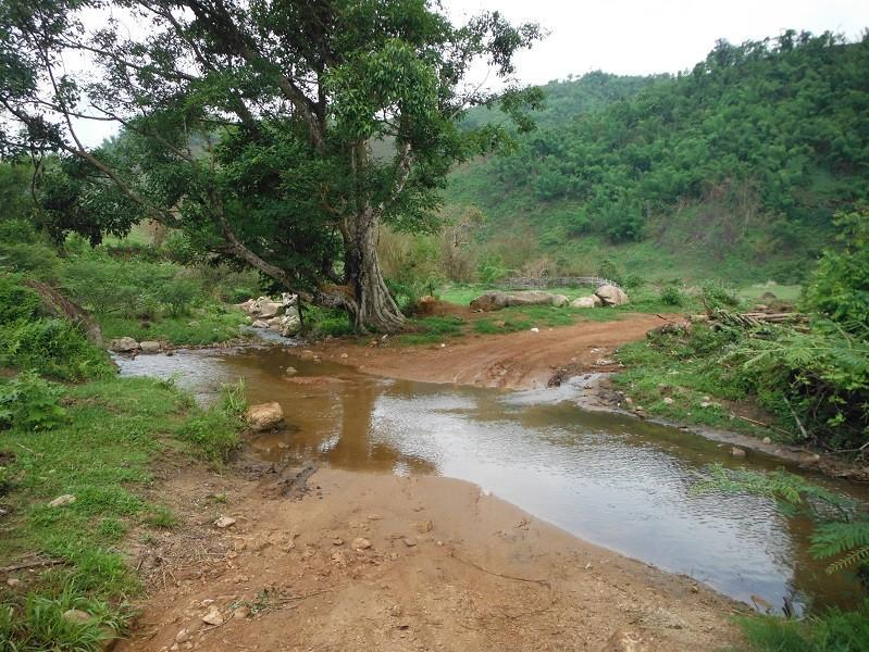 ChiangRai-DoiMaeSalong12.