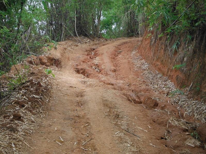 ChiangRai-DoiMaeSalong13.