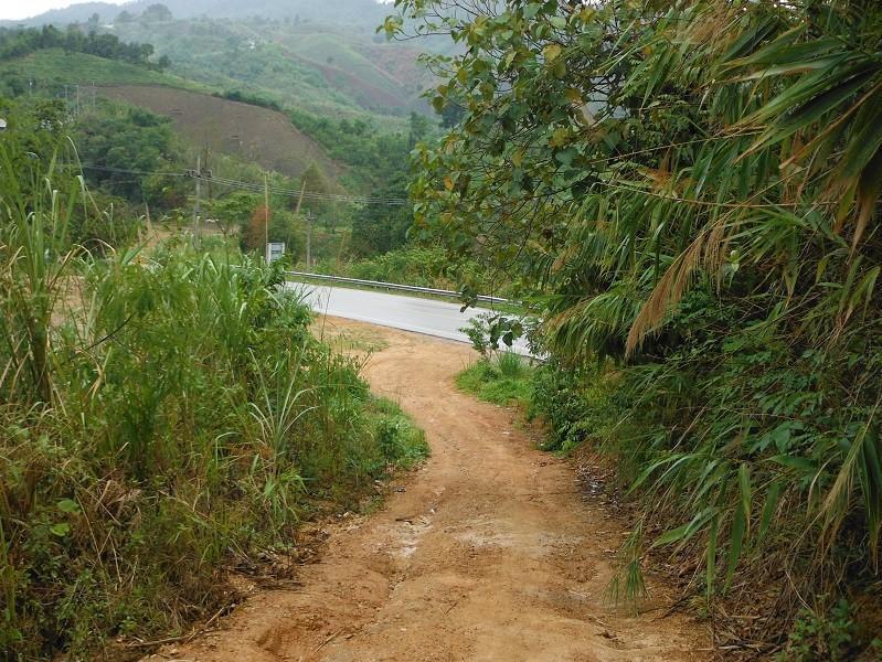 ChiangRai-DoiMaeSalong15.