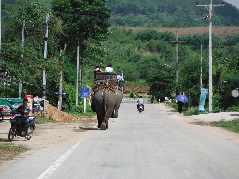 ChiangRai-DoiMaeSalong2.