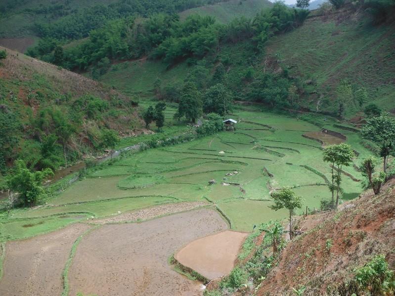 ChiangRai-DoiMaeSalong9.