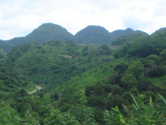 ChiangRai2053.jpg
