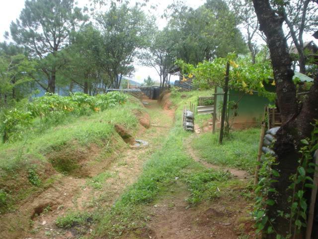 ChiangRai2096.