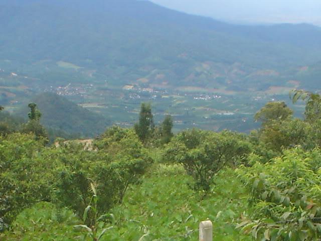 ChiangRai2101.jpg