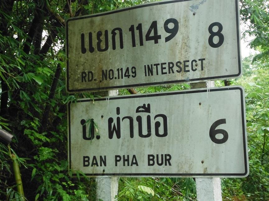 Choui Fong Tea Plantation Chiang Rai (18).JPG