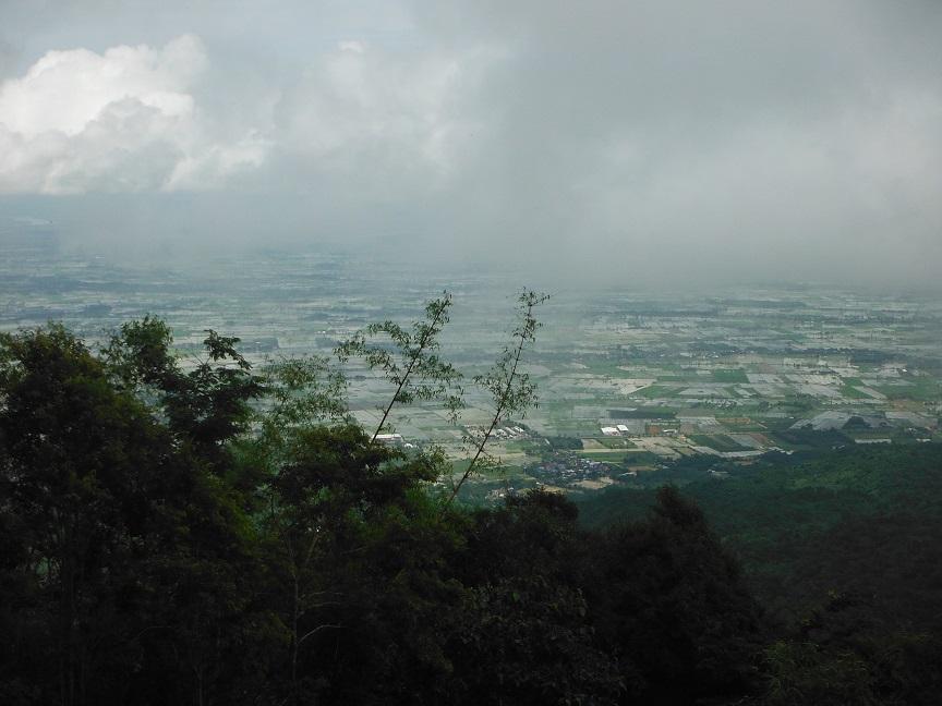 Choui Fong Tea Plantation Chiang Rai (28).JPG