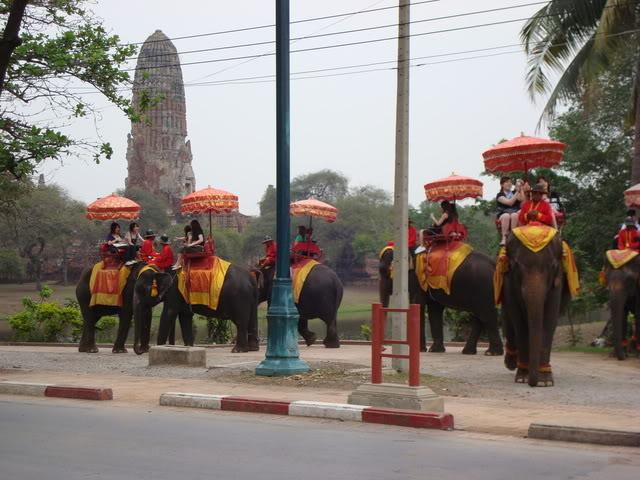 DSC00761.jpg /Chiang Mai to Burapa and Back./Central  Thailand Road  Trip Reports/  - Image by: