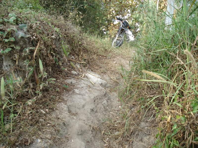 DSC00911.jpg /offf-road to doi pui and mountain bike trails/Touring Northern Thailand - Trip Reports Forum/  - Image by: