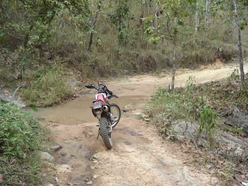 DSC00919.jpg /offf-road to doi pui and mountain bike trails/Touring Northern Thailand - Trip Reports Forum/  - Image by: