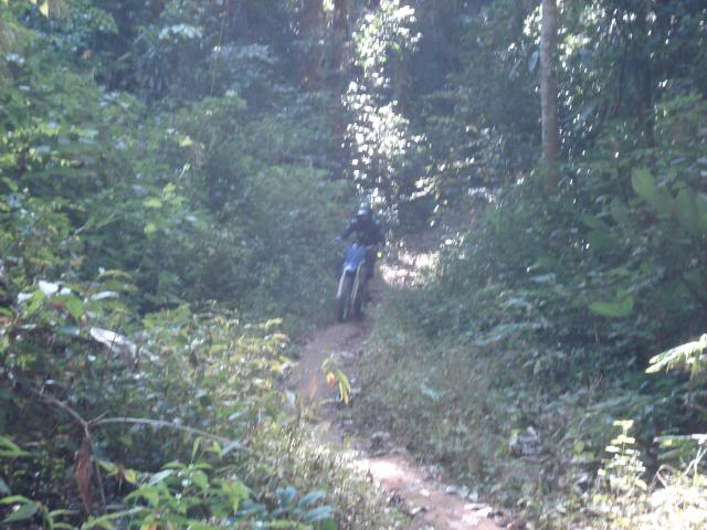 DSC02609.jpg /muang khong - wiang heang enduro track/Touring Northern Thailand - Trip Reports Forum/  - Image by: