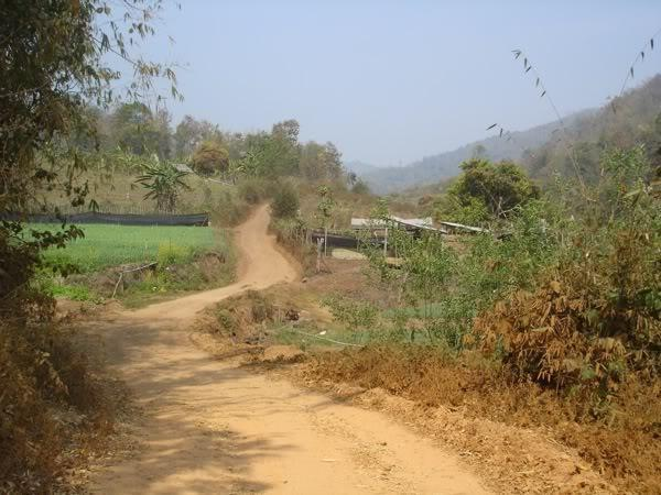 DSC03276.jpg /Samoeng Backroads/Touring Northern Thailand - Trip Reports Forum/  - Image by: