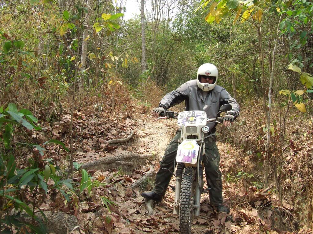 DSCF5132.jpg /Some fun in the jungle.../Touring Northern Thailand - Trip Reports Forum/  - Image by: