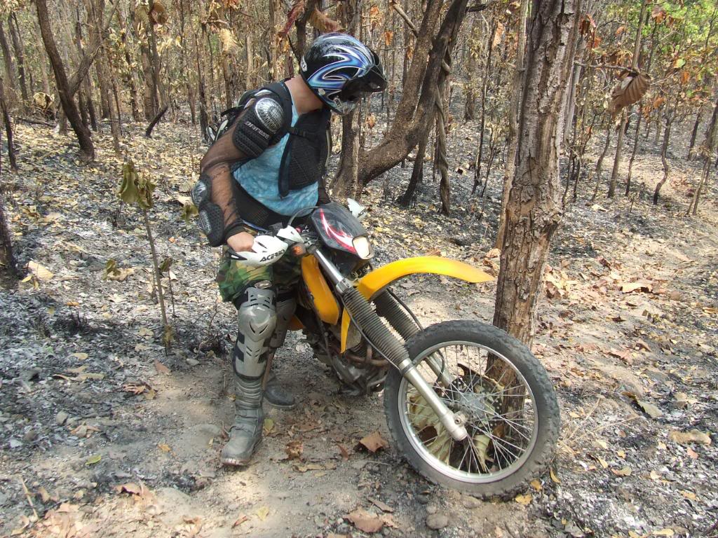 DSCF5142.jpg /Some fun in the jungle.../Touring Northern Thailand - Trip Reports Forum/  - Image by: