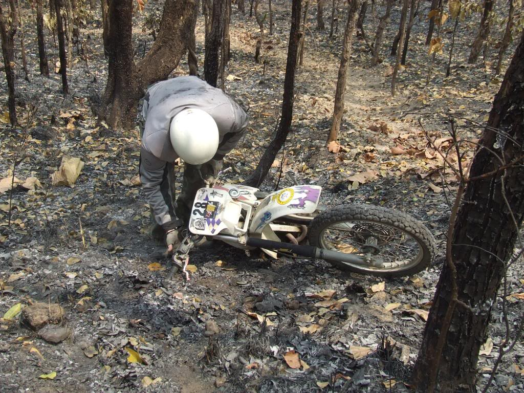 DSCF5150.jpg /Some fun in the jungle.../Touring Northern Thailand - Trip Reports Forum/  - Image by: