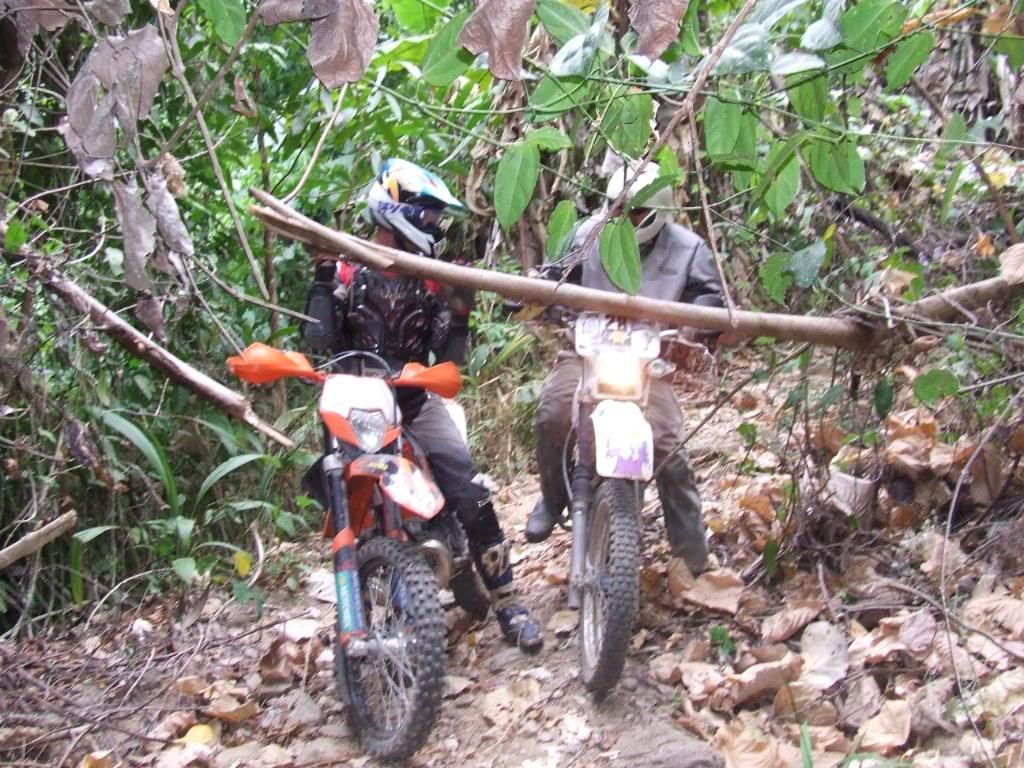 DSCF5176.jpg /Some fun in the jungle.../Touring Northern Thailand - Trip Reports Forum/  - Image by: