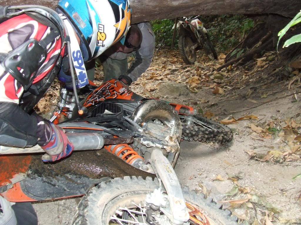 DSCF5187.jpg /Some fun in the jungle.../Touring Northern Thailand - Trip Reports Forum/  - Image by: