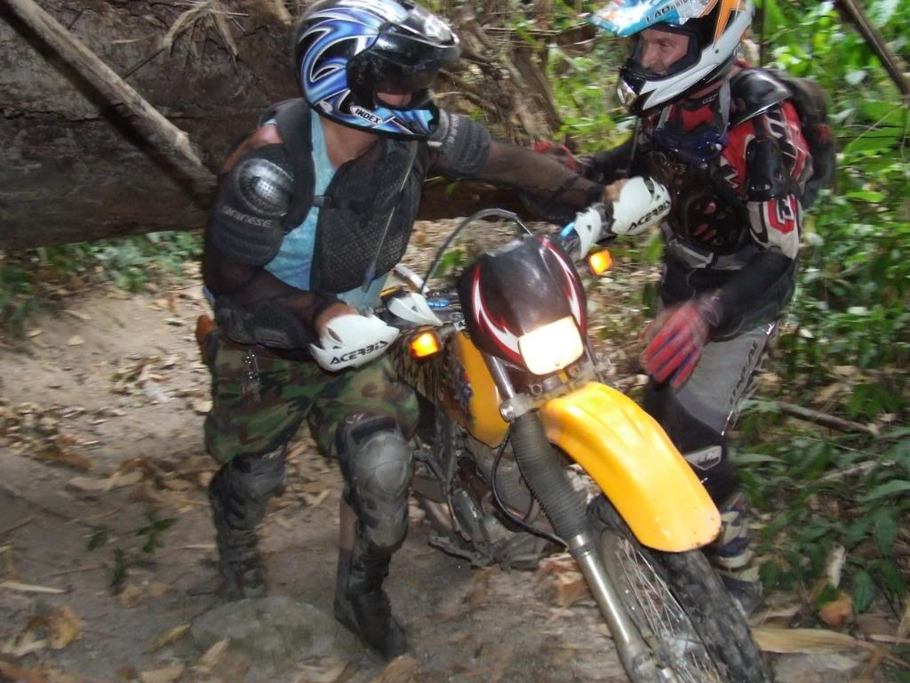 DSCF5191.jpg /Some fun in the jungle.../Touring Northern Thailand - Trip Reports Forum/  - Image by: