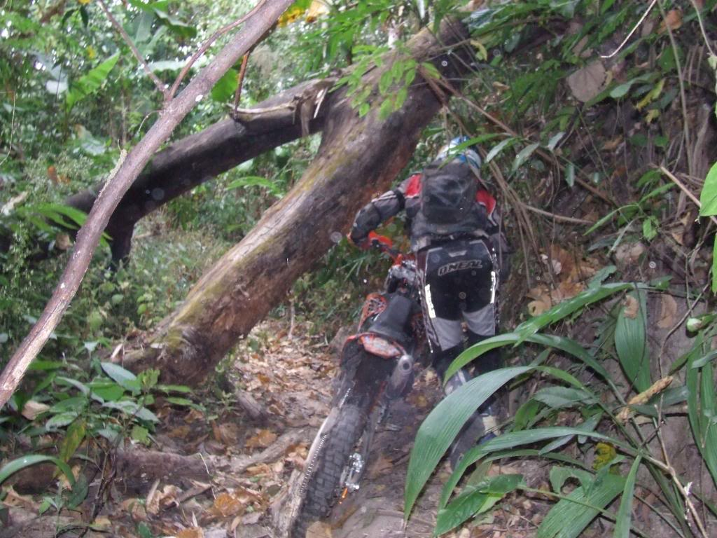 DSCF5193.jpg /Some fun in the jungle.../Touring Northern Thailand - Trip Reports Forum/  - Image by:
