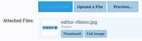 editor-insert-file.