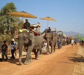 elephantparade.