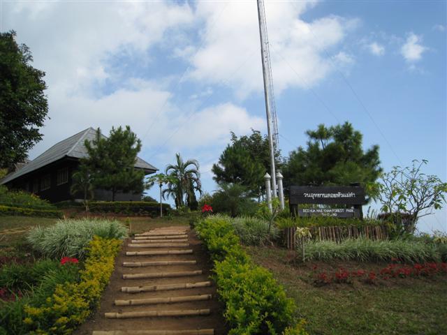 Forestpark1.