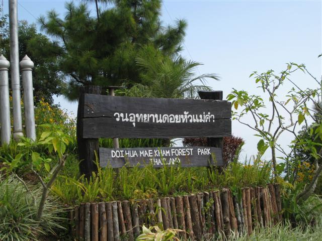 forestpark2.