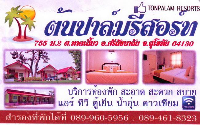 GTR-TonPalm.