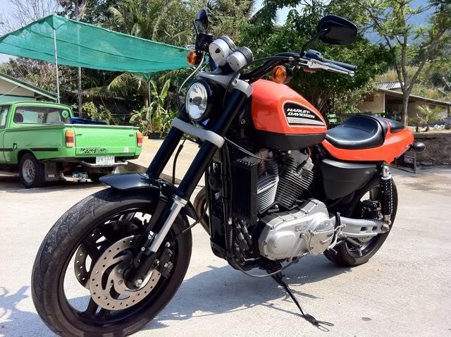 Harley6.