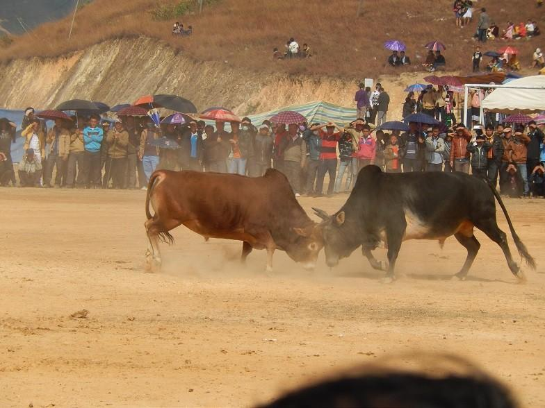 HmongNewYearLaos8.