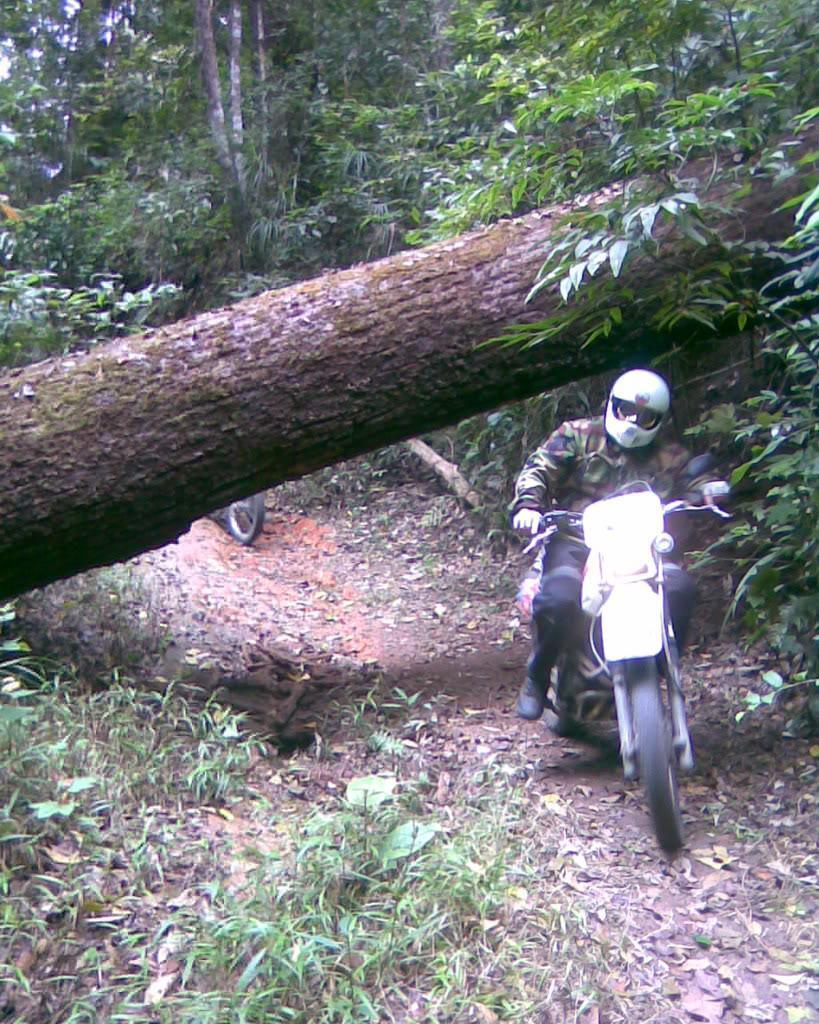 Image076.jpg /Happy New Year 2009 Off-road ride/Touring Northern Thailand - Trip Reports Forum/  - Image by: