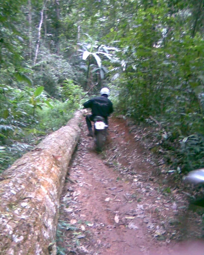 Image087.jpg /Happy New Year 2009 Off-road ride/Touring Northern Thailand - Trip Reports Forum/  - Image by: