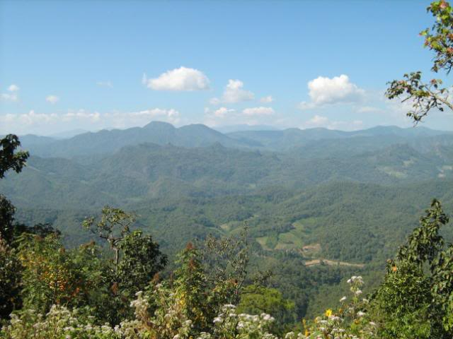 IMG_0025.jpg /Chiang Mai Trip 3  4/Touring Northern Thailand - Trip Reports Forum/  - Image by: