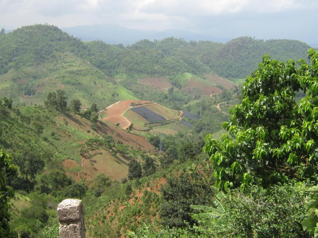 IMG_0267.jpg /North Chiang Rai, Tha Ton and Doi Mae Salong/Touring Northern Thailand - Trip Reports Forum/  - Image by: