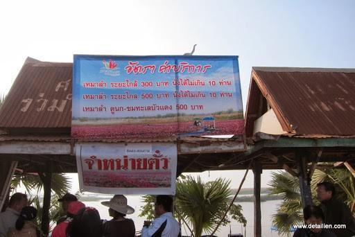 IMG_1797.jpg /Ride to sea of red lotusses - Kumphawapi district Part 3 Udon Thani Intl Air  Bike/N.E. Thailand Motorcycle Trip Report Forums/  - Image by: