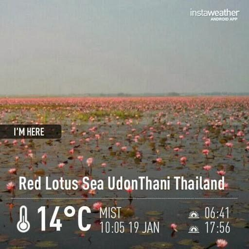 IMG_6056.jpg /Ride to sea of red lotusses - Kumphawapi district Part 3 Udon Thani Intl Air  Bike/N.E. Thailand Motorcycle Trip Report Forums/  - Image by: