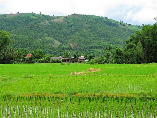 img_6619.jpg /Wet season: pottering around the Mae Hong Son Loop/Touring Northern Thailand - Trip Reports Forum/  - Image by: