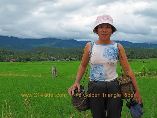 img_6770.jpg /Wet season: pottering around the Mae Hong Son Loop/Touring Northern Thailand - Trip Reports Forum/  - Image by: