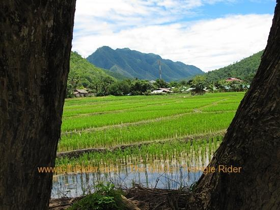 img_7546.jpg /Wet season: pottering around the Mae Hong Son Loop/Touring Northern Thailand - Trip Reports Forum/  - Image by: