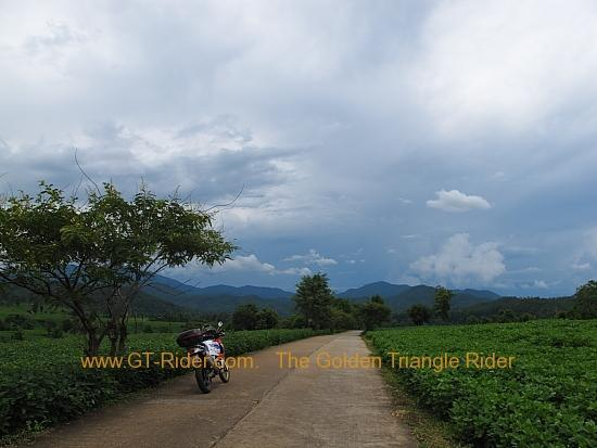 img_7995.jpg /Wet season: pottering around the Mae Hong Son Loop/Touring Northern Thailand - Trip Reports Forum/  - Image by: