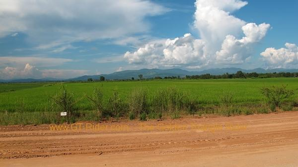 img_9317.jpg /Route 1290 Mae Sai - Golden Triangle/Touring Northern Thailand - Trip Reports Forum/  - Image by: