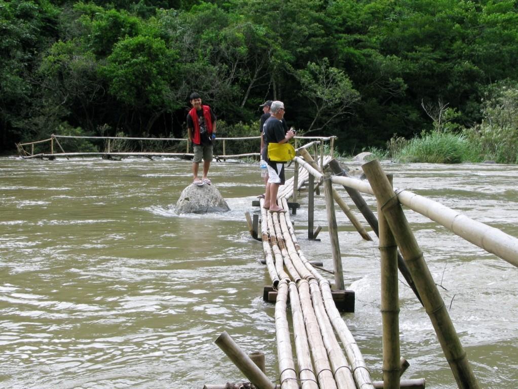 junglewalkingtrail3.