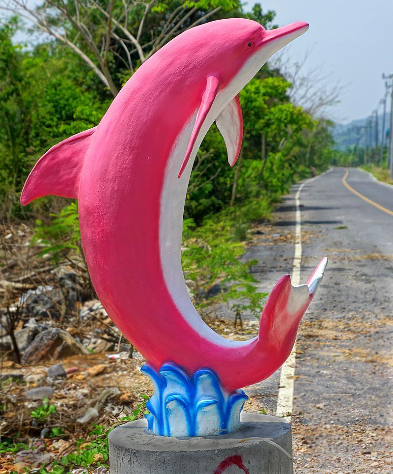 khanom-dolphin-dd.