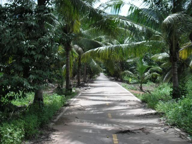 kohchangthailand26.