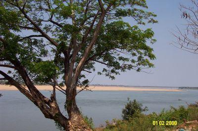 Kratie_-_Mekong_sandbar.