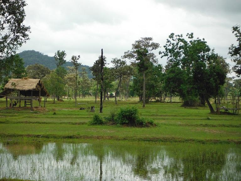 Laos%20Motorcycle%20Savannakhet%203.