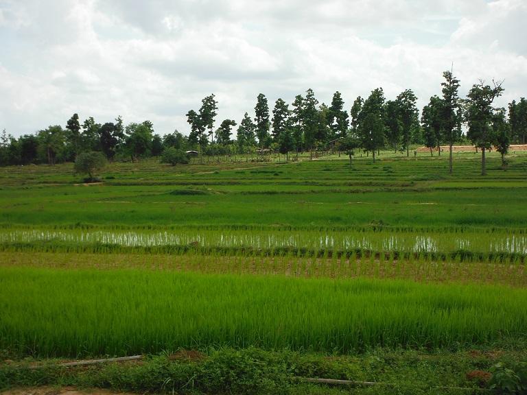 Laos%20Motorcycle%20Savannakhet%2031.