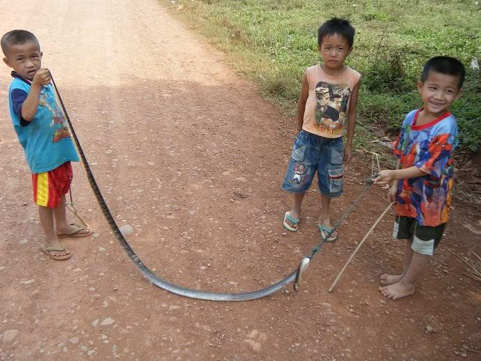 Laos-Motorcycle-Asia34.